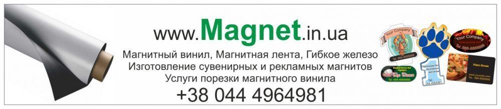 Плоскі магніти, їх різновиди