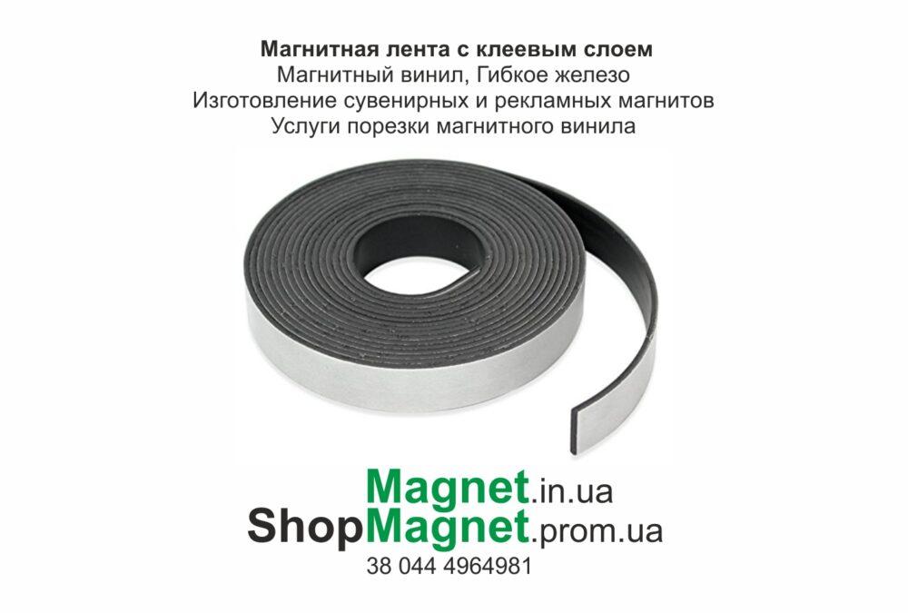 Гибкая магнитная лента